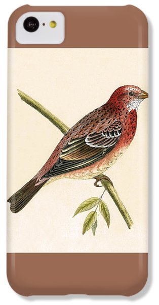 Finch iPhone 5c Case - Rosy Bullfinch by English School