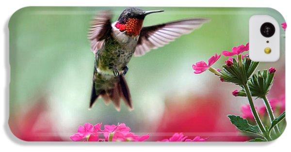 Humming Bird iPhone 5c Case - Ruby Garden Jewel by Christina Rollo