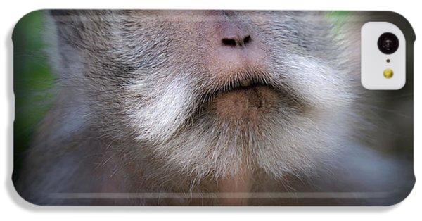 Sacred Monkey Forest Sanctuary IPhone 5c Case by Larry Marshall