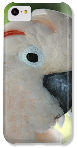 Salmon Crested Moluccan Cockatoo IPhone 5c Case