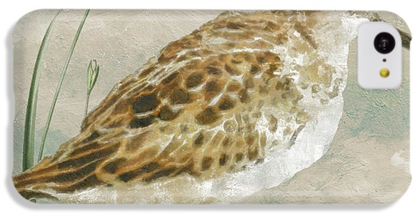 Sandpiper I IPhone 5c Case by Mindy Sommers
