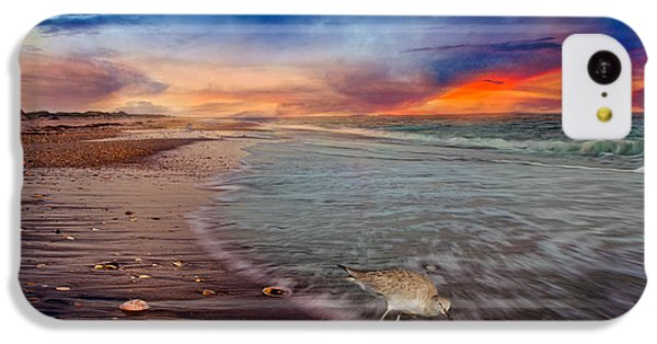 Sandpiper iPhone 5c Case - Sandpiper Sunrise by Betsy Knapp