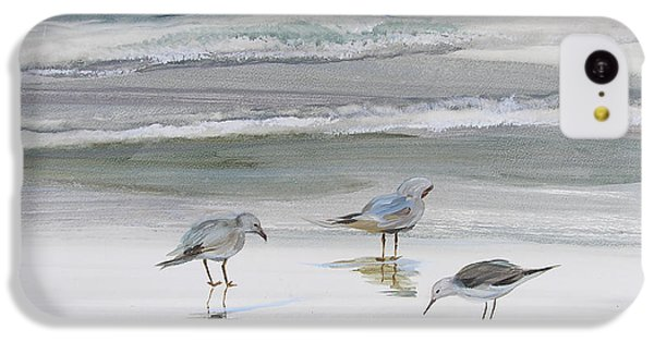 Sandpiper iPhone 5c Case - Sandpipers by Julianne Felton