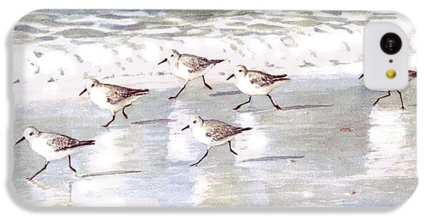 Sandpipers On Siesta Key IPhone 5c Case