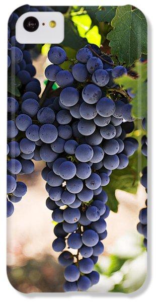 Sauvignon Grapes IPhone 5c Case