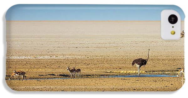 Savanna Life IPhone 5c Case by Inge Johnsson