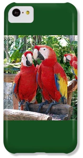 Scarlet Macaws IPhone 5c Case by Ellen Henneke