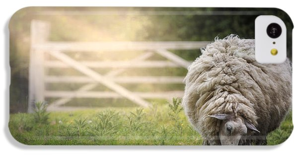 Sheep iPhone 5c Case - Sheep by Joana Kruse