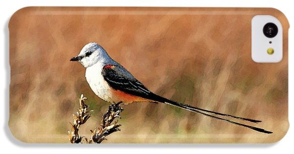 Scissor-tailed Flycatcher IPhone 5c Case