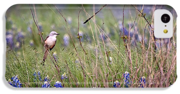 Scissor-tailed Flycatchers IPhone 5c Case