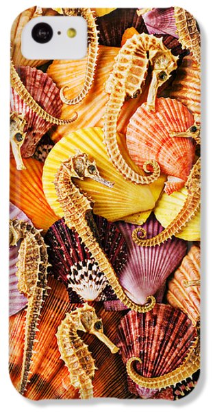 Sea Horses And Sea Shells IPhone 5c Case by Garry Gay