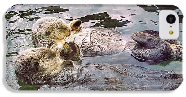 Sea Otters Holding Hands IPhone 5c Case by BuffaloWorks Photography