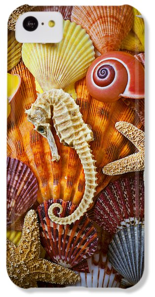 Seahorse And Assorted Sea Shells IPhone 5c Case by Garry Gay
