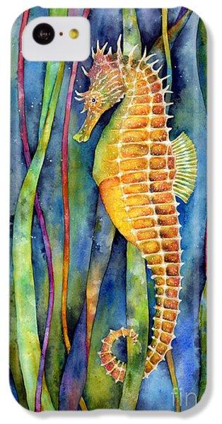 Seahorse iPhone 5c Case - Seahorse by Hailey E Herrera