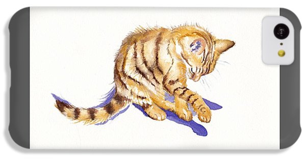 Cat iPhone 5c Case - Shadow Boxing by Debra Hall
