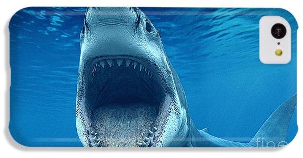 Shark Beach Collection IPhone 5c Case