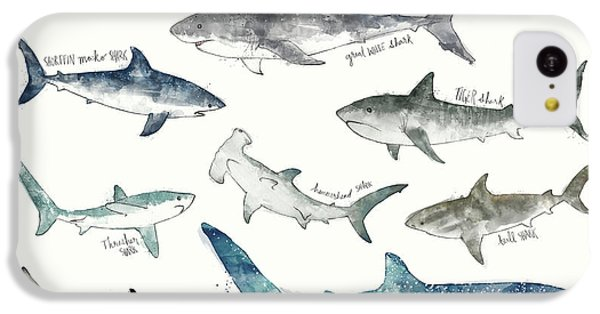 Sharks iPhone 5c Case - Sharks - Landscape Format by Amy Hamilton