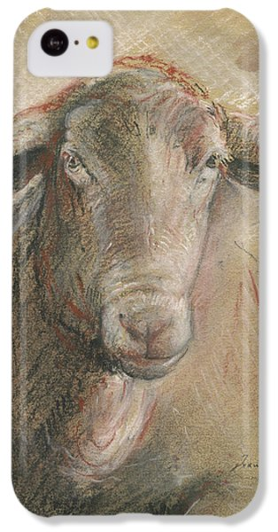 Sheep iPhone 5c Case - Sheep Head by Juan Bosco