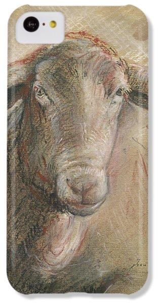Sheep Head IPhone 5c Case by Juan Bosco