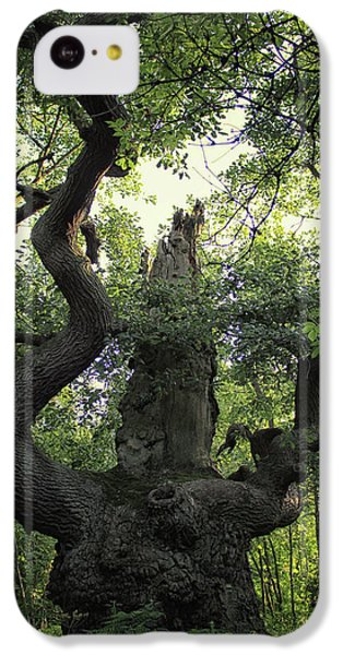 Dungeon iPhone 5c Case - Sherwood Forest by Martin Newman