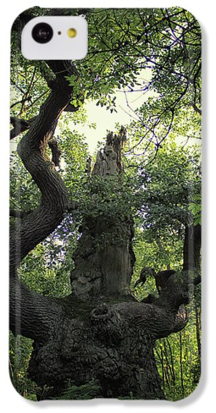 Sherwood Forest IPhone 5c Case by Martin Newman
