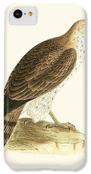 Short Toed Eagle IPhone 5c Case by English School