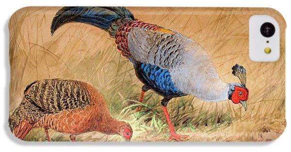 Siamese Pheasant  IPhone 5c Case