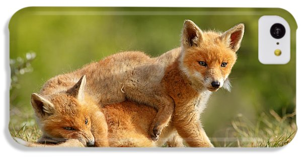 Sibbling Love - Playing Fox Cubs IPhone 5c Case
