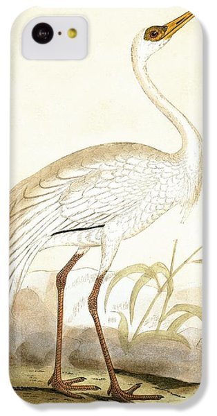 Siberian Crane IPhone 5c Case by English School