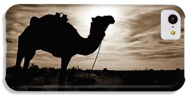 Desert iPhone 5c Case - Silhouetted Camel, Sahara Desert, Douz by David DuChemin