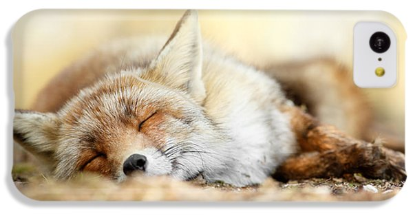 Sleeping Beauty -red Fox In Rest IPhone 5c Case