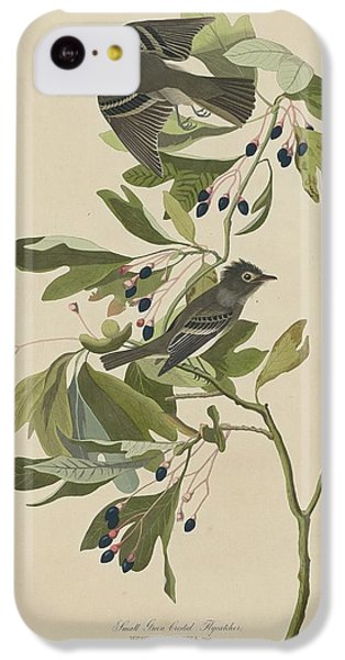 Flycatcher iPhone 5c Case - Small Green-crested Flycatcher by Dreyer Wildlife Print Collections