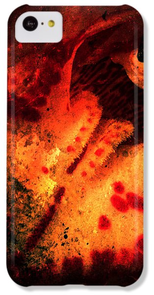 iPhone 5c Case - Smaug by Orphelia Aristal