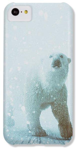 Polar Bear iPhone 5c Case - Snow Patrol by Katherine Smit