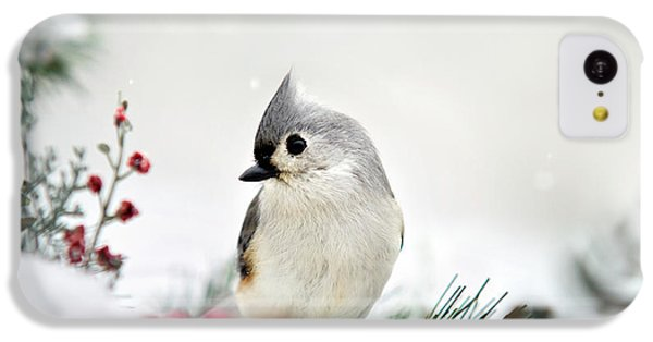 Snow White Tufted Titmouse IPhone 5c Case by Christina Rollo