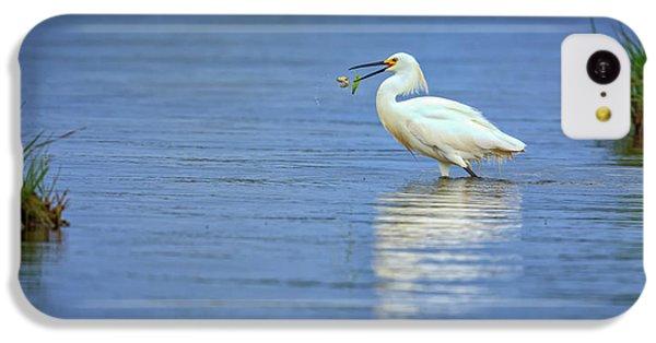 Snowy Egret At Dinner IPhone 5c Case by Rick Berk