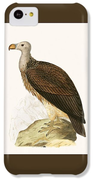 Sociable Vulture IPhone 5c Case by English School