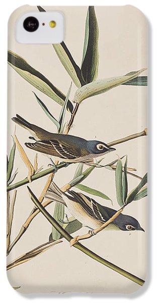 Flycatcher iPhone 5c Case - Solitary Flycatcher Or Vireo by John James Audubon