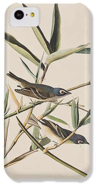 Solitary Flycatcher Or Vireo IPhone 5c Case by John James Audubon
