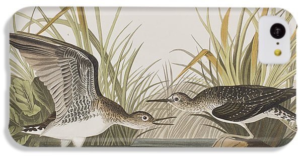 Sandpiper iPhone 5c Case - Solitary Sandpiper by John James Audubon