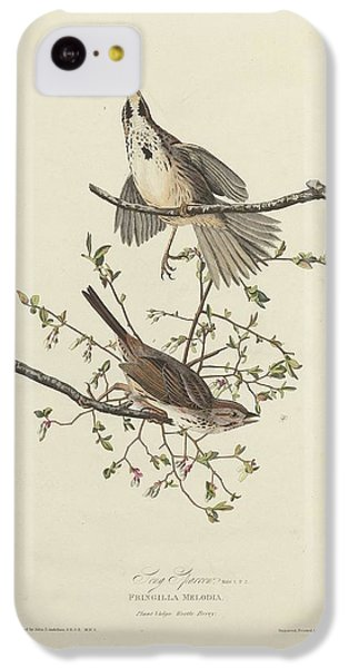 Song Sparrow IPhone 5c Case by Rob Dreyer