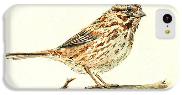 Song Sparrow IPhone 5c Case