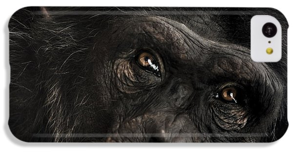 Sorrow IPhone 5c Case by Paul Neville