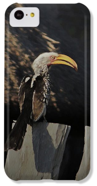 Southern Yellow Billed Hornbill IPhone 5c Case by Ernie Echols
