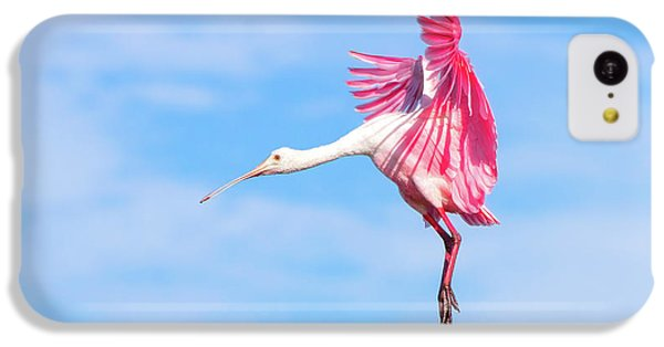 Spoonbill Ballet IPhone 5c Case by Mark Andrew Thomas
