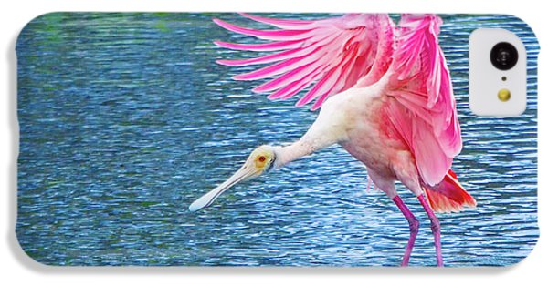 Spoonbill Splash IPhone 5c Case by Mark Andrew Thomas