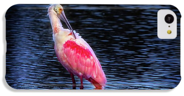 Spoonbill Sunset IPhone 5c Case by Mark Andrew Thomas