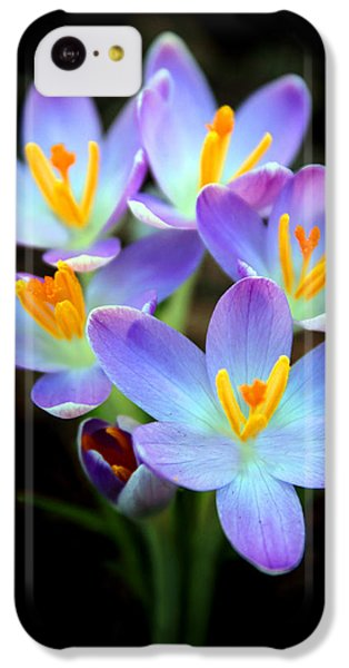 IPhone 5c Case featuring the photograph Spring Crocus by Jessica Jenney