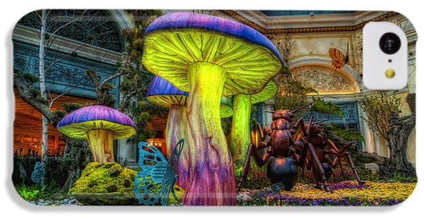 Spring Mushrooms IPhone 5c Case by Stephen Campbell