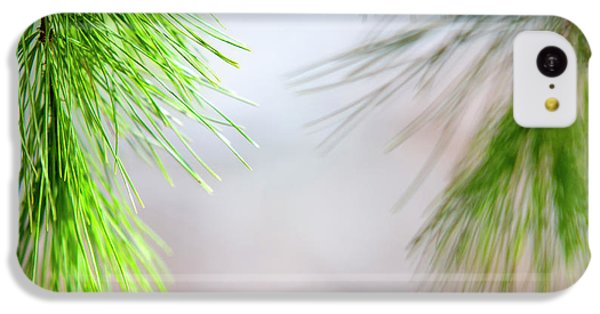 Spring Pine Abstract IPhone 5c Case by Christina Rollo